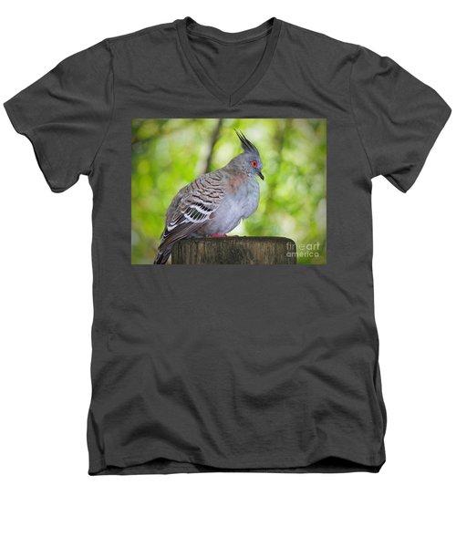 Watchful Eye Men's V-Neck T-Shirt by Judy Kay