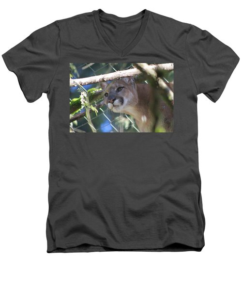 Men's V-Neck T-Shirt featuring the photograph Watchful Eyes by Laddie Halupa