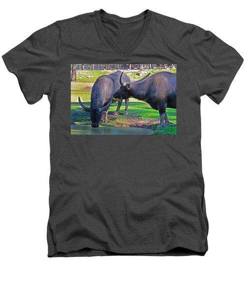 Watching 2 Water Buffalos 1 Water Buffalo Watching Me Men's V-Neck T-Shirt