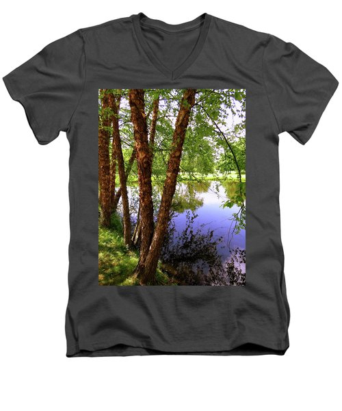 Water Birch Men's V-Neck T-Shirt