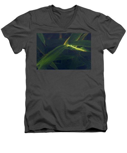 Water Catcher Men's V-Neck T-Shirt