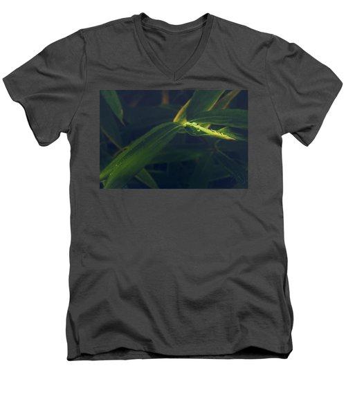 Water Catcher Men's V-Neck T-Shirt