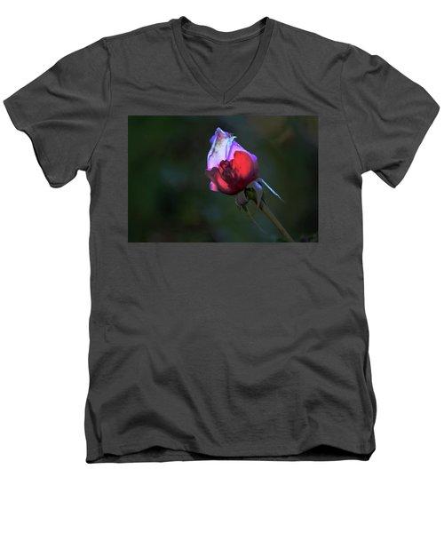 Water Droplets On The Rose Men's V-Neck T-Shirt