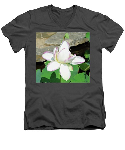 Water Lotus Men's V-Neck T-Shirt by Inspirational Photo Creations Audrey Woods