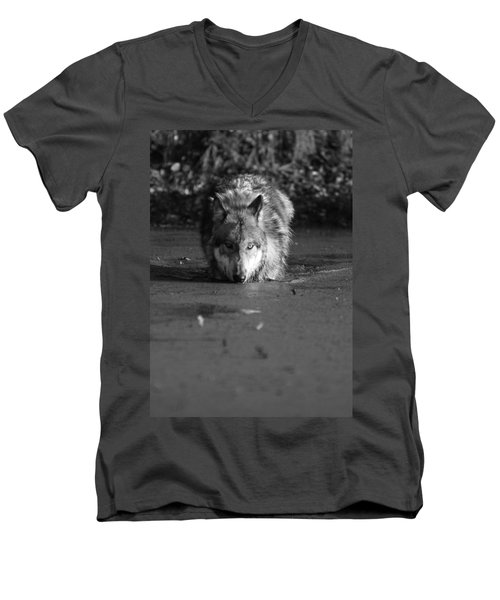 Men's V-Neck T-Shirt featuring the photograph Water Wolf I by Shari Jardina
