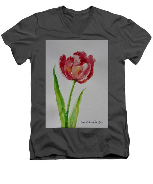 Watercolor Series No.  228 Men's V-Neck T-Shirt
