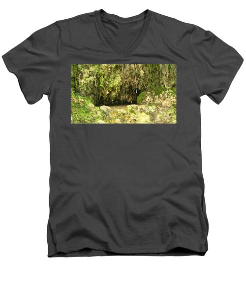 Watering Hole Men's V-Neck T-Shirt