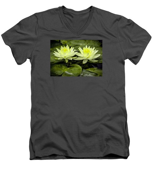 Waterlily Duet Men's V-Neck T-Shirt by Venetia Featherstone-Witty
