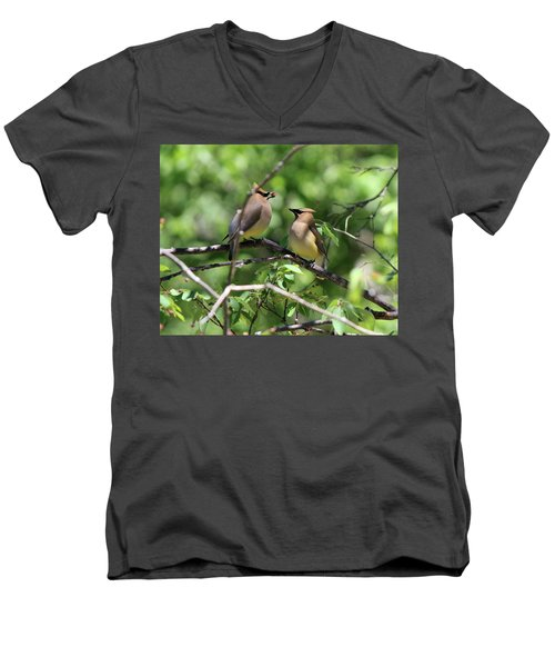 Waxwing Socialism Men's V-Neck T-Shirt