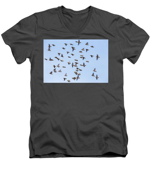 Men's V-Neck T-Shirt featuring the photograph Waxwings by Mircea Costina Photography