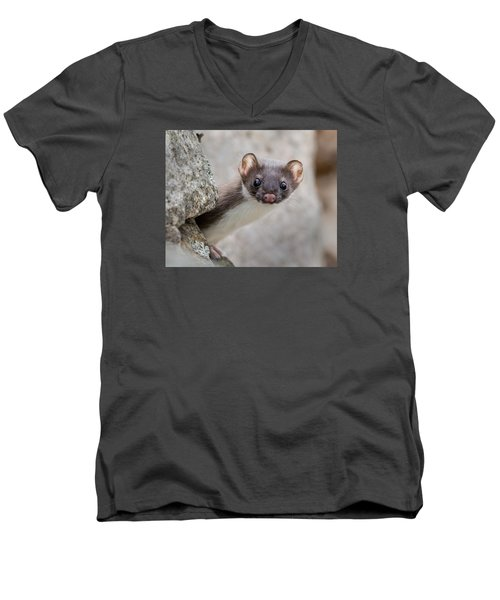 Weasel Peek-a-boo Men's V-Neck T-Shirt