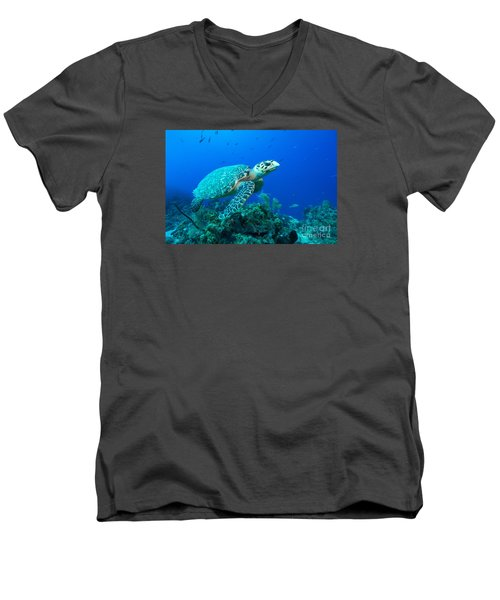 Men's V-Neck T-Shirt featuring the photograph West Caicos Traveler by Aaron Whittemore