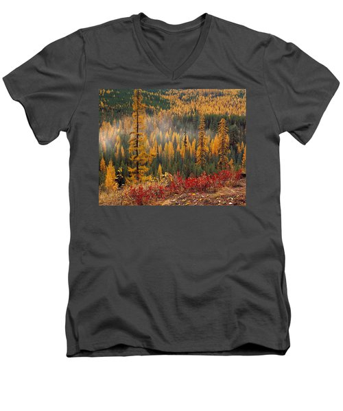 Western Larch Forest Autumn Men's V-Neck T-Shirt