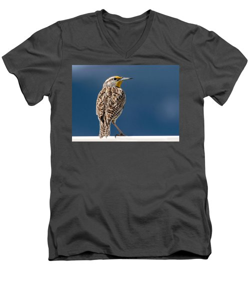 Western Meadowlark Men's V-Neck T-Shirt