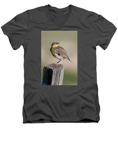 Men's V-Neck T-Shirt featuring the photograph Western Meadowlark by Gary Lengyel