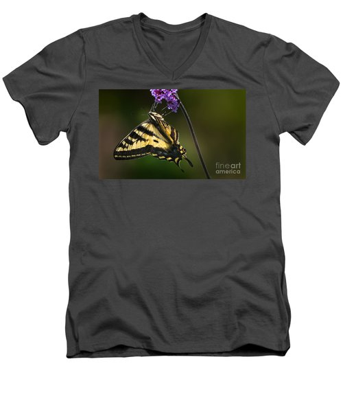 Western Tiger Swallowtail Butterfly On Purble Verbena Men's V-Neck T-Shirt