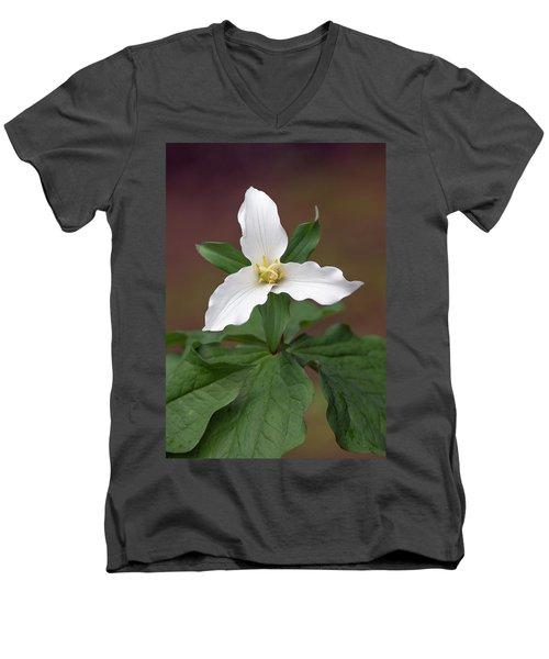 Western Trillium Men's V-Neck T-Shirt