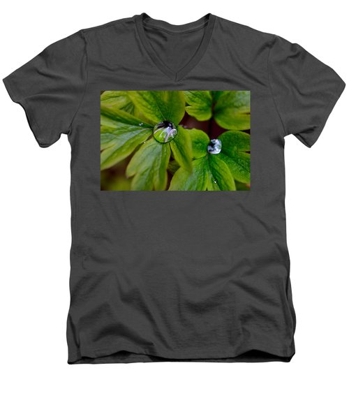 Wet Bleeding Heart Leaves Men's V-Neck T-Shirt by Brent L Ander