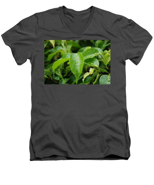Men's V-Neck T-Shirt featuring the photograph Wet Bushes by Rob Hans