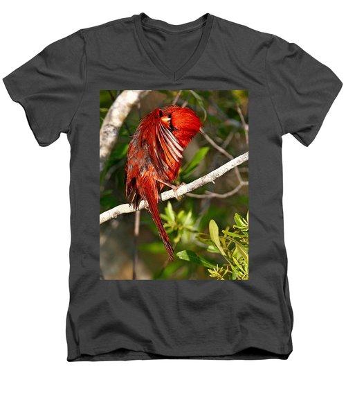 Wet Cardinal Men's V-Neck T-Shirt