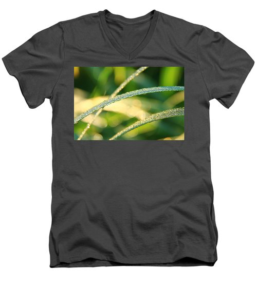 Wet Grass Men's V-Neck T-Shirt