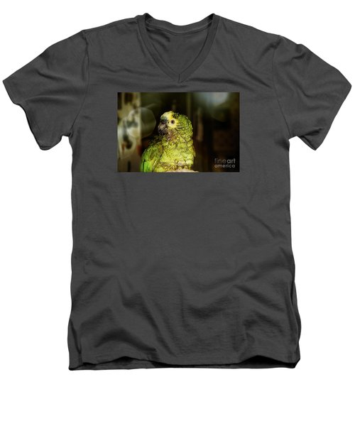 Men's V-Neck T-Shirt featuring the photograph Wet Parrot by Melissa Messick