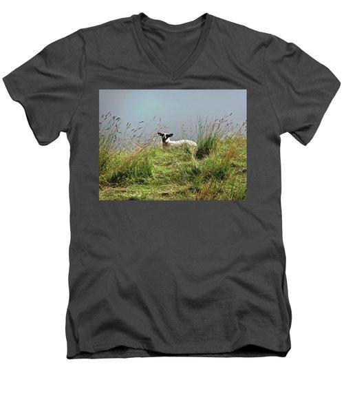 Wet Sheep Men's V-Neck T-Shirt