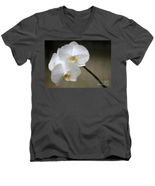 Wet White Orchids Men's V-Neck T-Shirt