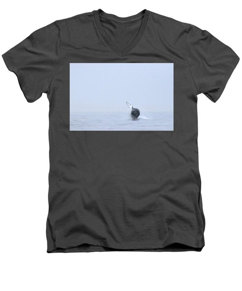 Whale Men's V-Neck T-Shirt