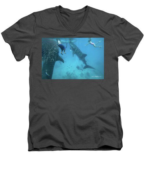 Whale Sharks Men's V-Neck T-Shirt by Tim Fitzharris