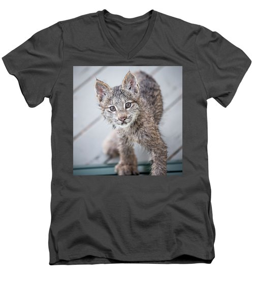 What Are You Men's V-Neck T-Shirt