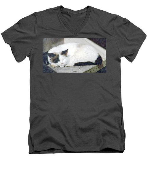 What Do Cats Dream Of #2 Men's V-Neck T-Shirt