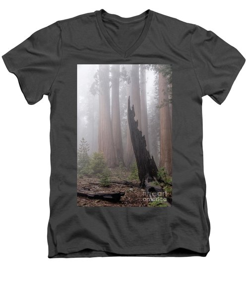 Men's V-Neck T-Shirt featuring the photograph What Lurks In The Forest by Peggy Hughes