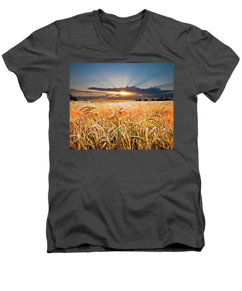 Wheat At Sunset Men's V-Neck T-Shirt