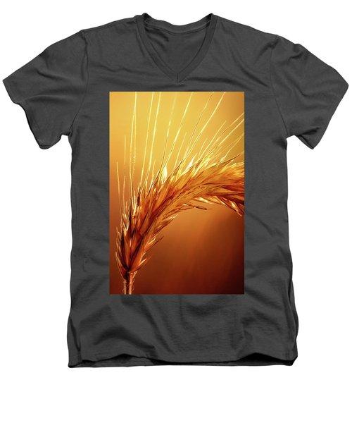 Wheat Close-up Men's V-Neck T-Shirt