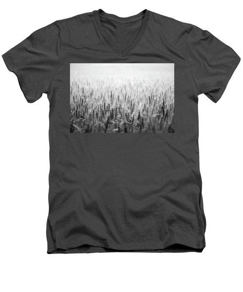 Wheat Field Men's V-Neck T-Shirt