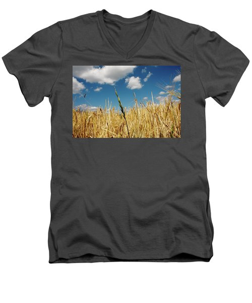 Men's V-Neck T-Shirt featuring the photograph Wheat On The Rhine by KG Thienemann