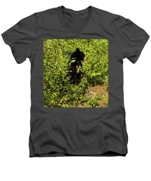 Where Are The Berries? Men's V-Neck T-Shirt
