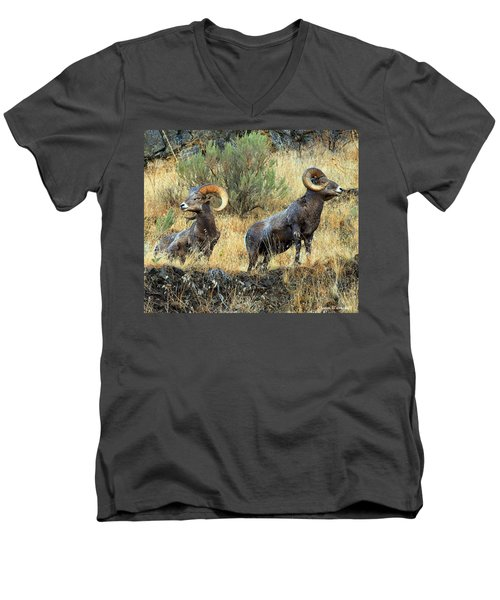 Where Did They Go? Men's V-Neck T-Shirt by Steve Warnstaff