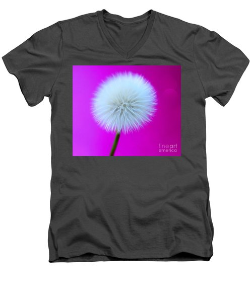 Whimsy Wishes Men's V-Neck T-Shirt