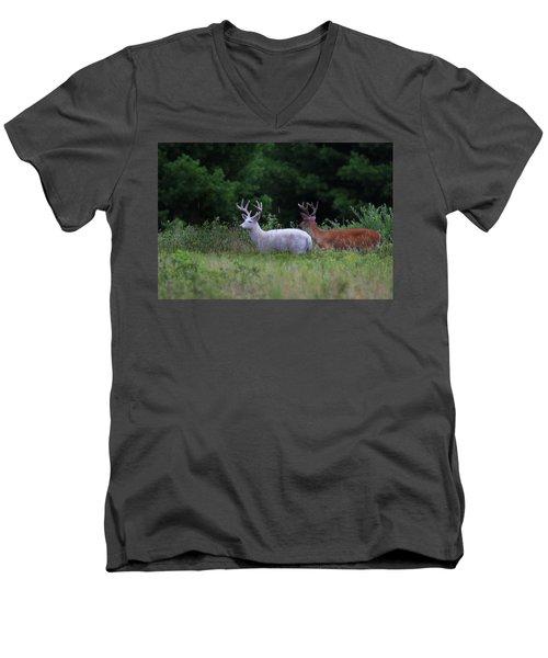 White And Brown Bucks Men's V-Neck T-Shirt