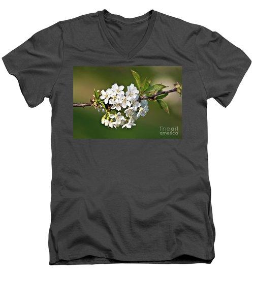 White Apple Blossoms Men's V-Neck T-Shirt