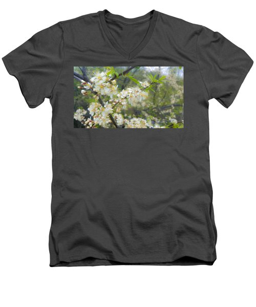 White Blossoms On Fruit Tree Men's V-Neck T-Shirt