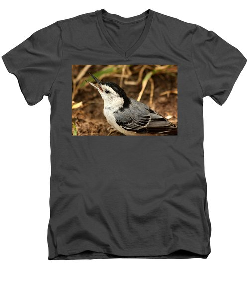 White Breasted Nuthatch 2 Men's V-Neck T-Shirt by Sheila Brown