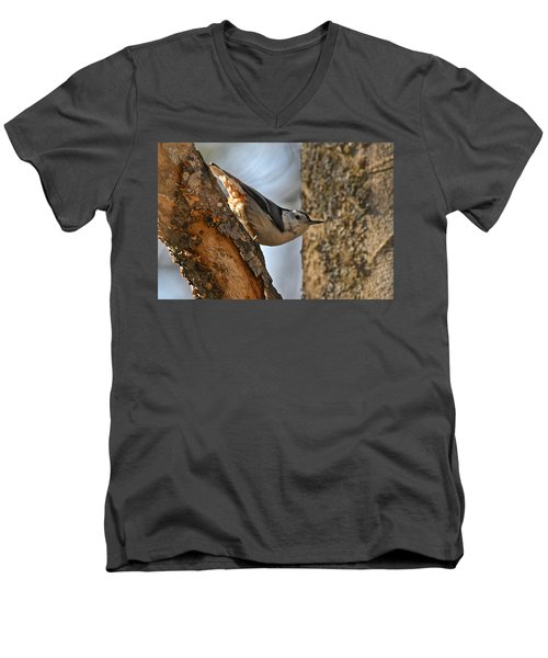 White Breasted Nuthatch 370 Men's V-Neck T-Shirt by Michael Peychich