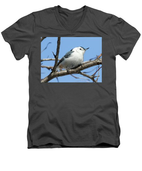 White-breasted Nuthatch Perched Men's V-Neck T-Shirt