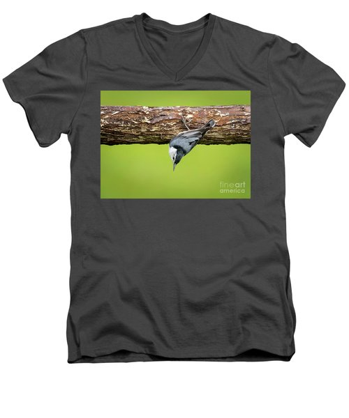 Men's V-Neck T-Shirt featuring the photograph White-breasted Nuthatches by Ricky L Jones