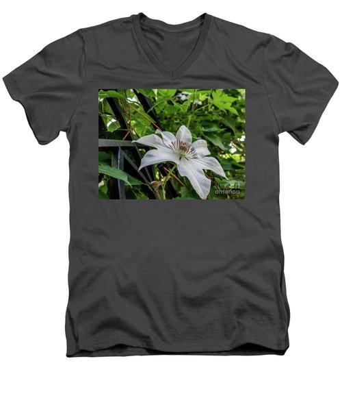 White Clematis Flower Garden 50129 Men's V-Neck T-Shirt