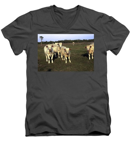 White Cows Men's V-Neck T-Shirt by Sally Weigand