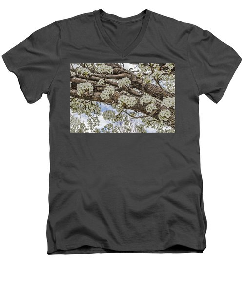 Men's V-Neck T-Shirt featuring the photograph White Crabapple Blossoms by Sue Smith